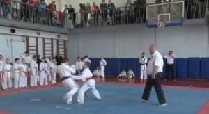 Pervenstvo Ryazani po karate